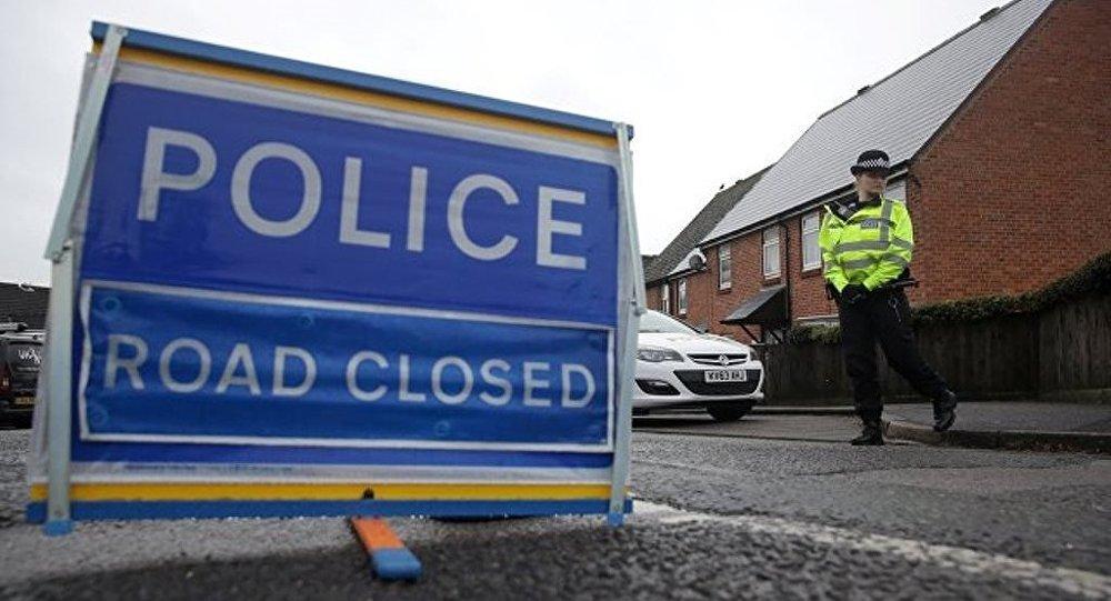 倫敦邀請禁止化武組織專家分析斯克里帕利案件調查結果