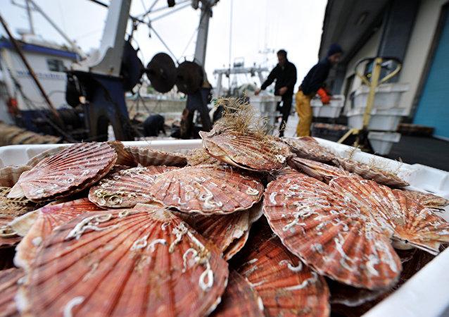 俄滨海边疆区2021年已向中国出口2.37万吨鱼类产品