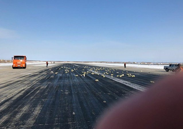 侦查委员会查明雅库特昂贵钢锭从飞机上掉落的原因