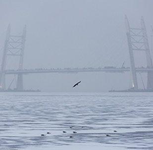 俄羅斯漁民拍到芬蘭灣「海嘯」