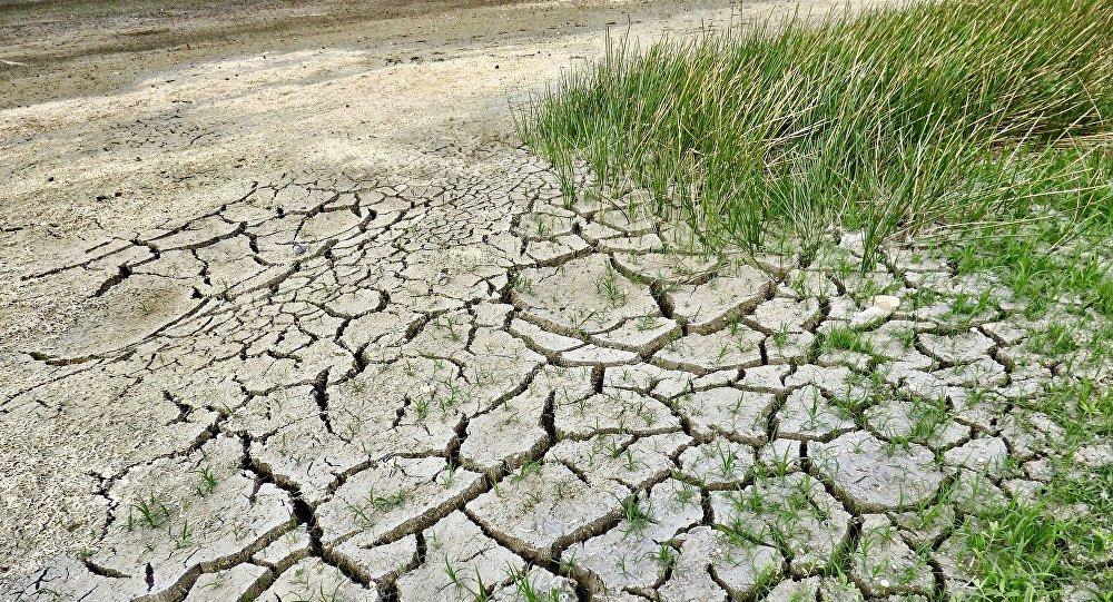 中国生态环境部:当前气候多边进程面临的最大问题是发达国家提供支持的政治意愿不足