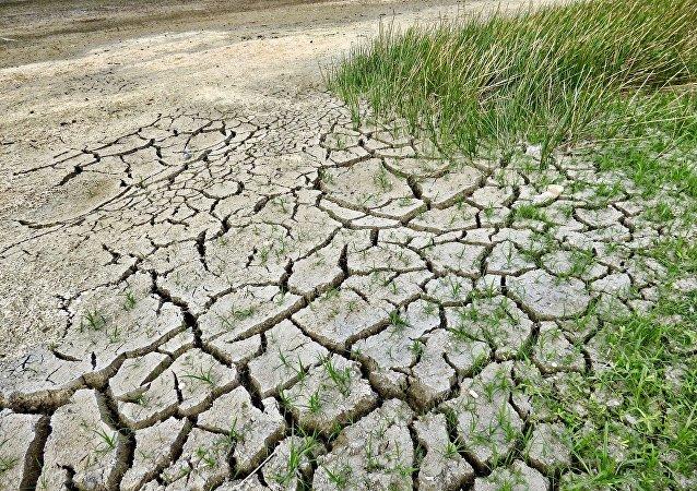 俄副总理指出受气候变化威胁的俄罗斯三个经济领域