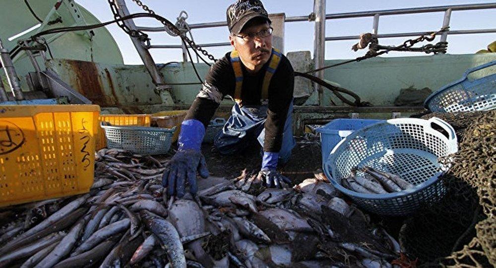 专家:福岛水产对俄居民安全