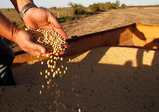 中国下调部分亚洲国家进口货物关税 大豆进口关税调降至零