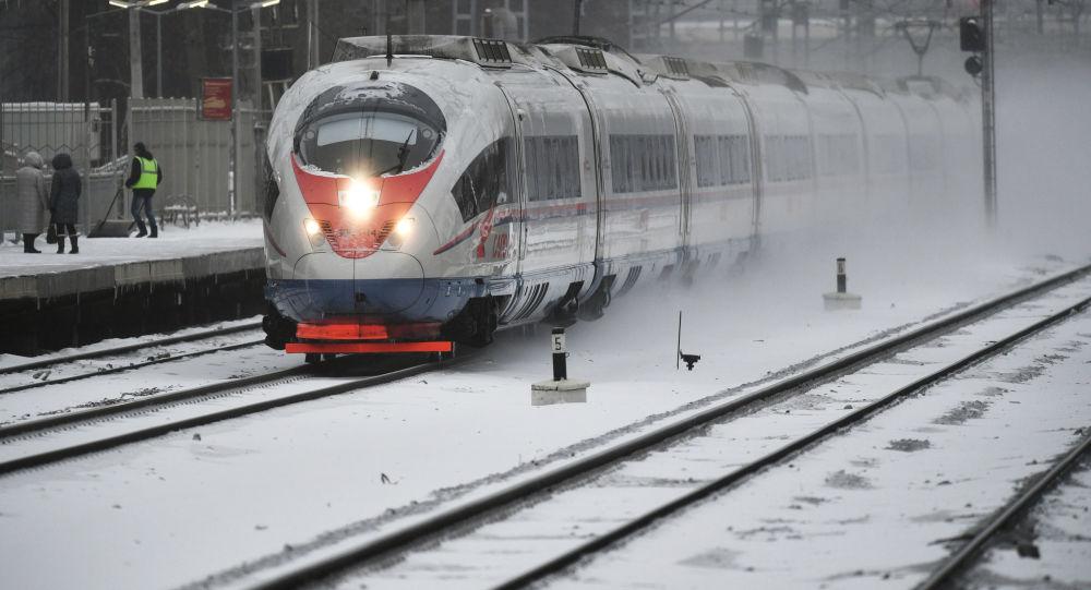 俄学者向总统提交新版跨欧亚运输发展计划