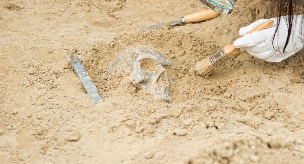 在古墓中發現世界上第一個賽博格