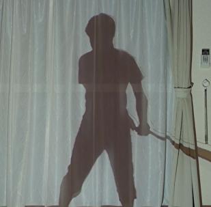 日本窗簾上將出現拳擊手