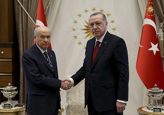 土耳其总统宣布将于6月24日提前举行总统和议会选举