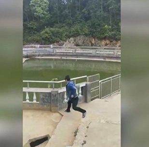 中国一只猕猴报复欺负自己的游客