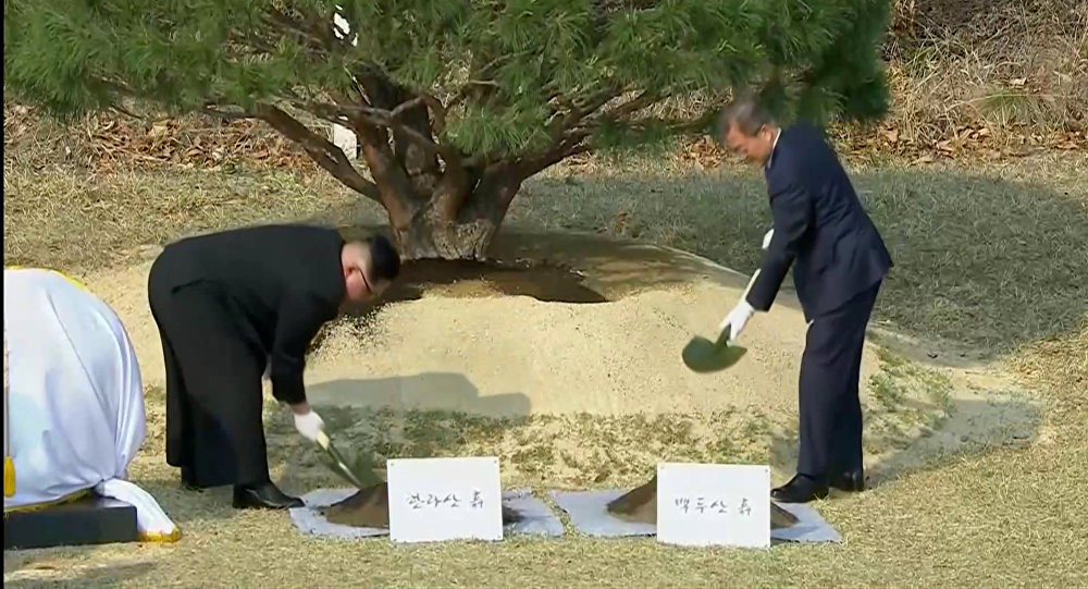 朝韓領導人在板門店共植松樹