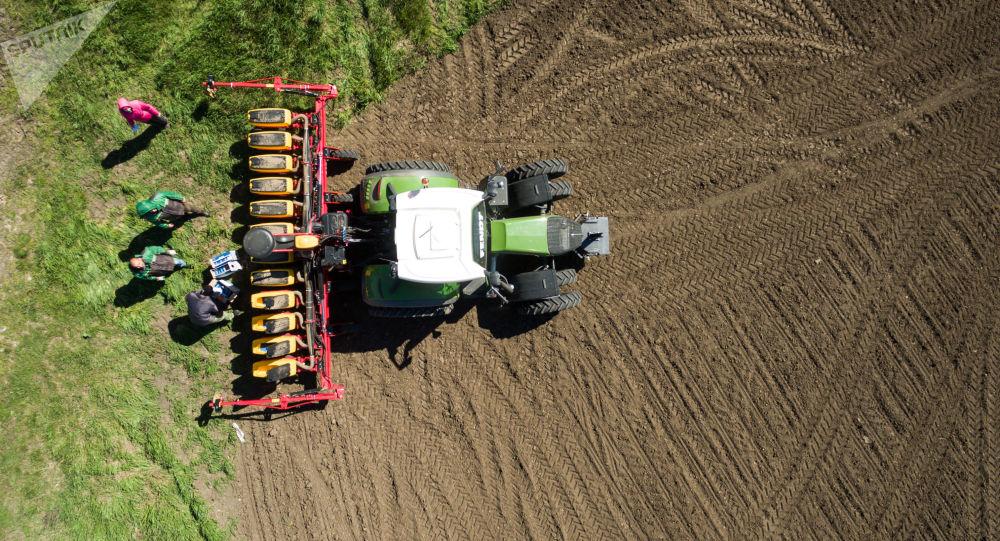 罗斯托夫州农业生产商拟扩大对华出口