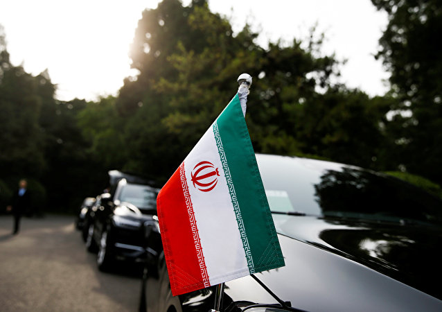 """专家:""""伊朗行动小组""""的成立表明美国没有准备好对话"""