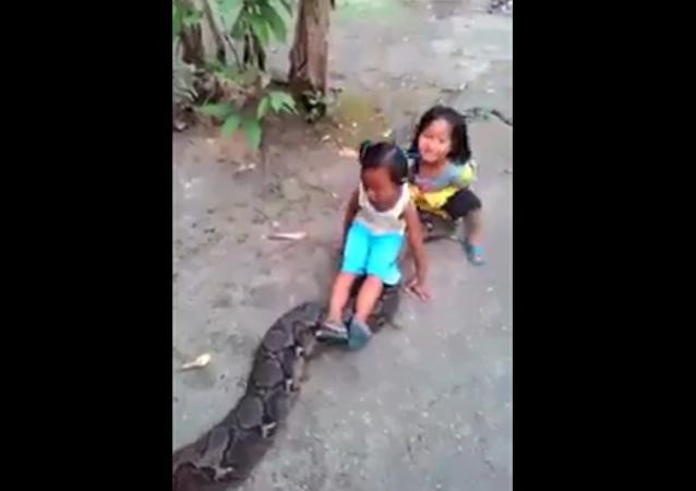 實拍印度女孩騎巨蟒 (視頻)