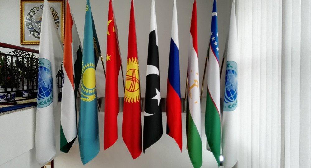 巴基斯坦专家:上合组织贸易便利化拥有良好经济和社会基础