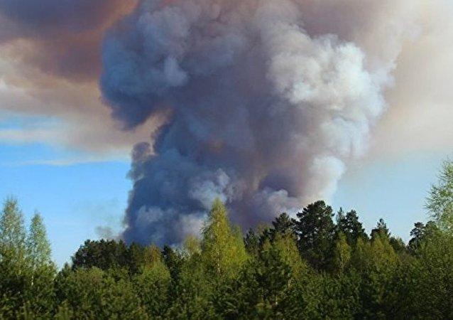 俄乌德穆尔特共和国火灾明火被扑灭