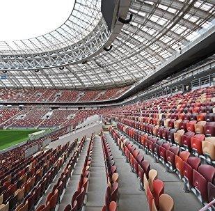 俄羅斯世界杯將設「超重」專席