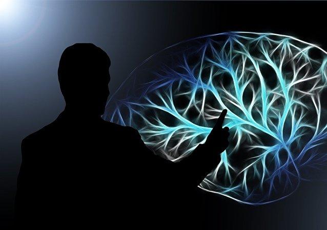 专家揭示脑部特点与收入水平的关系
