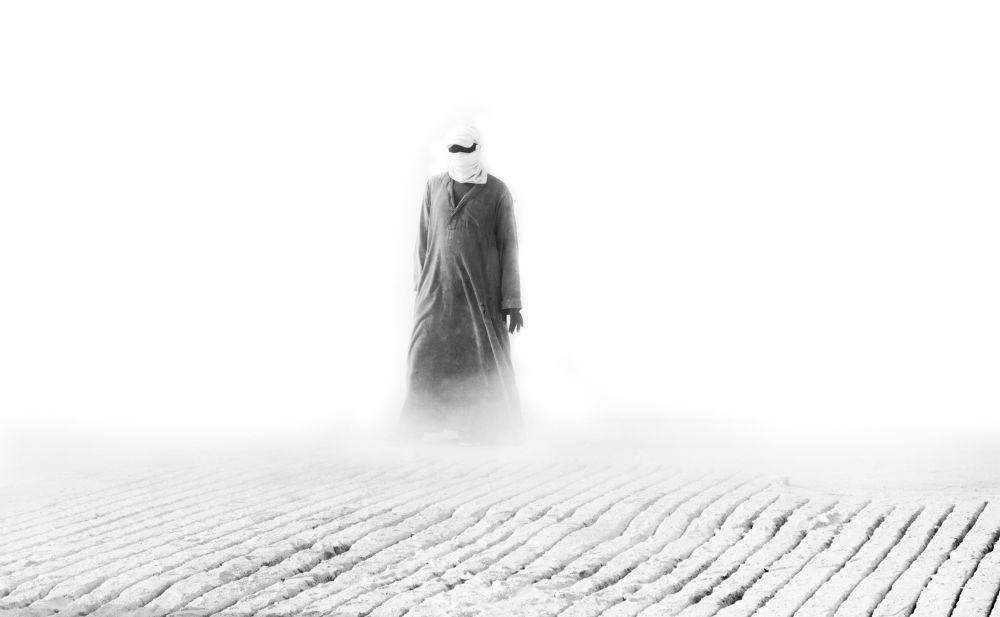 安德烈·斯捷寧國際新聞攝影大賽入圍作品