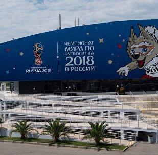 俄白外長將於下周簽署世界杯期間簽證互認協議