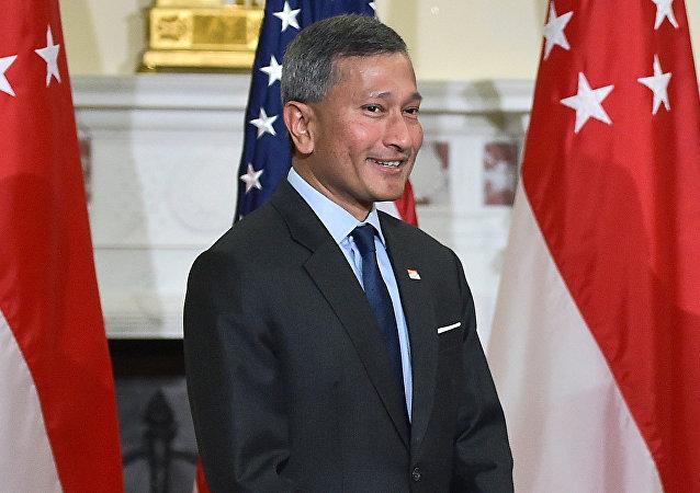 新加坡外长维文