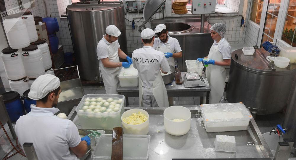 莫斯科奶酪工厂餐馆在生产奶酪。