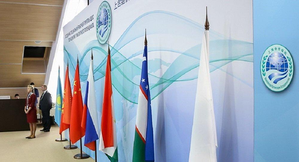 普京:金砖国家和上合峰会举办地点改为圣彼得堡