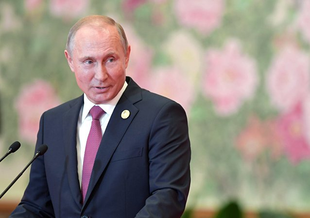 普京:打造歐亞經濟夥伴關係已邁出重要的第一步
