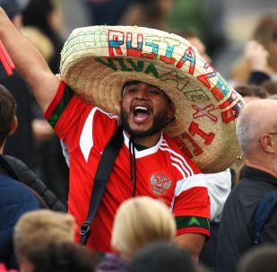 地震学家:墨西哥球迷造成了地震波,但非真正意义上的地震