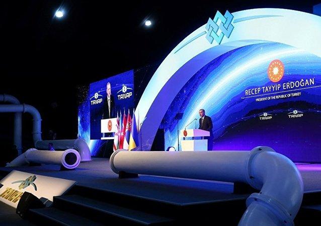 跨安納托利亞天然氣管道在土耳其正式開通