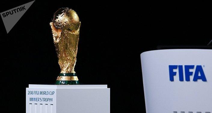 20多位国家元首将出席俄罗斯世界杯揭幕战
