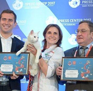 聖彼得堡的著名貓咪預測官將預測世界杯首場比賽結果