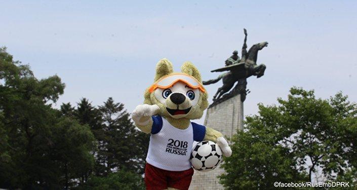 俄驻朝使馆脸书账号发布世界杯吉祥物照片
