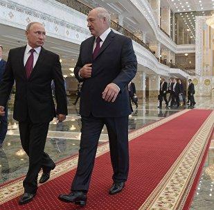 普京:已與白俄總統就包括國際合作在內的所有問題進行討論