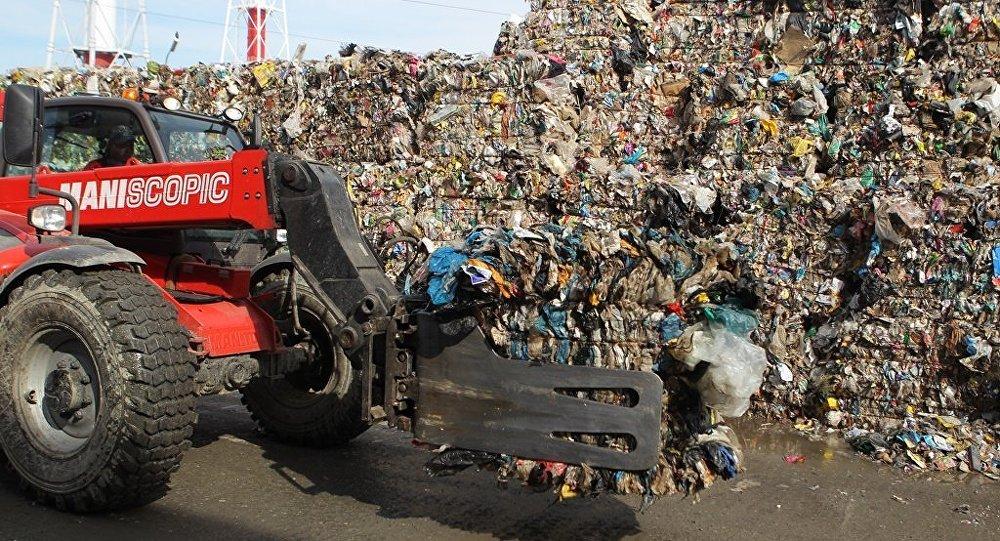 日本公司计划在俄滨海边疆区引进生物废料处理技术