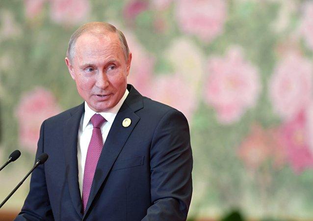 普京:打造欧亚经济伙伴关系已迈出重要的第一步
