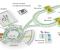 """""""尼卡""""(NICA ,Nuclotron-based Ion Collider facility)对撞机粒子加速器是一个综合体,借助它可以研究构成宇宙的物质性质。  图片:在建中的""""尼卡""""对撞机粒子加速器综合体示意图"""