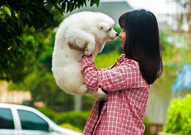 科学家们发现狗对其主人表情的反应