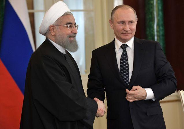 普京和鲁哈尼讨论叙利亚伊德利卜局势