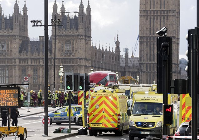 媒体:英国侦查人员倾向认为议会大厦外事件可能不是恐袭