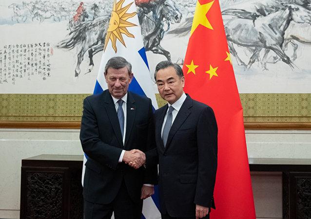 中国国务委员兼外交部长王毅19日在北京与乌拉圭外长尼恩举行会谈
