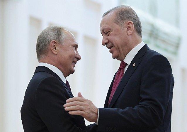 普京十分信任土耳其总统