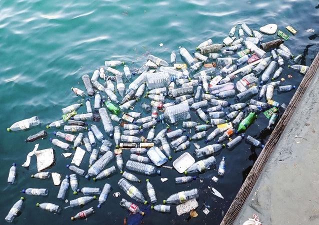 欧洲议会委员会支持自2021年禁止欧盟国家使用一次性塑料餐具