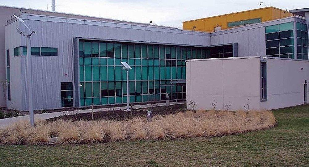 美国防部:没有在格鲁吉亚卢加尔实验室研究生物武器