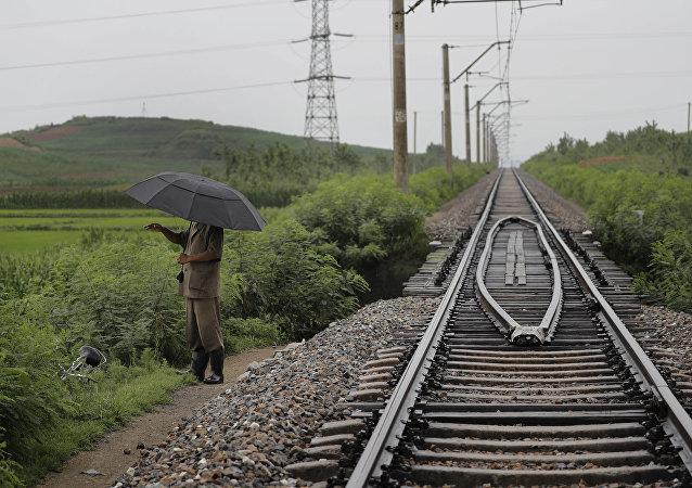 津巴布韦总统:津巴布韦对俄企参与发展基础设施感兴趣