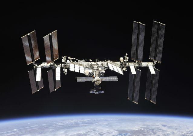 新生物打印机将于12月3日运往国际空间站