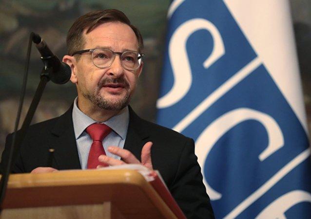 欧洲安全与合作组织秘书长托马斯·格雷明格