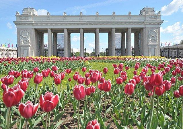 莫斯科高尔基文化公园(资料图片)
