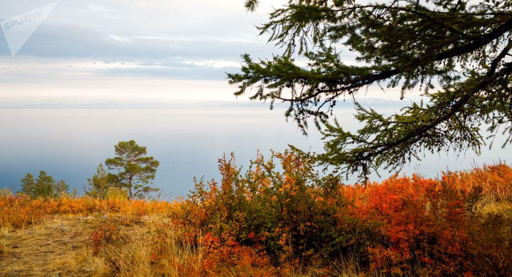 俄西伯利亚将在欧洲至中国的古老陆路线路基础上建设旅游步道