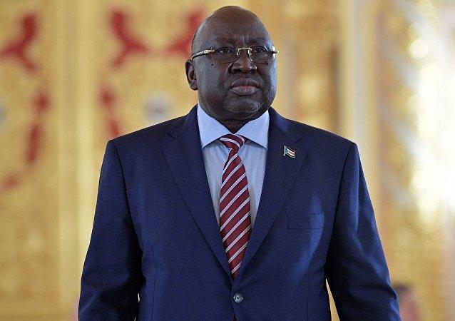 南苏丹驻俄罗斯大使玛雅