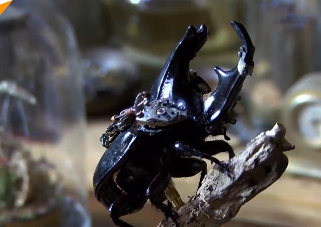 中国年轻艺术家变昆虫为蒸汽朋克艺术